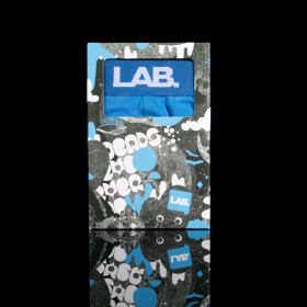 Lab - Briefs